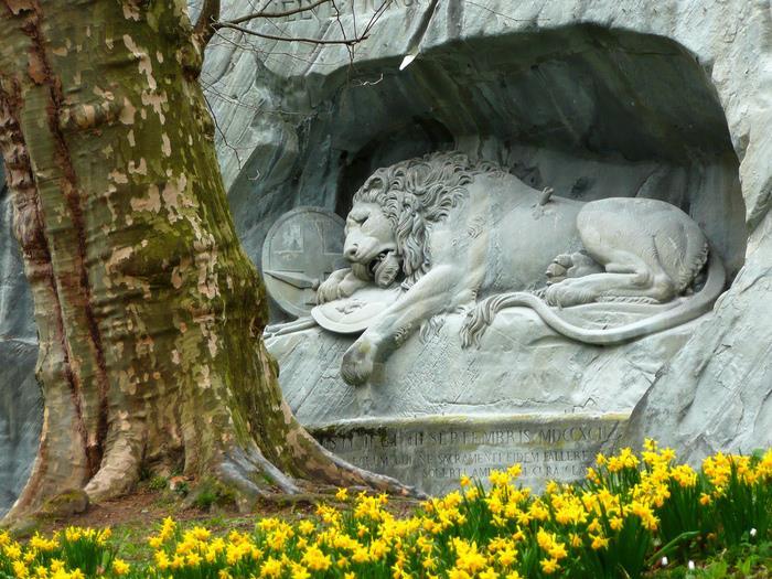швейцария фото умирающий лев