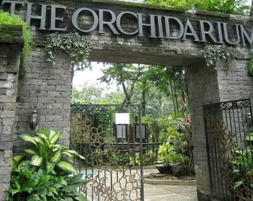 Philippines_the_Orchidarium
