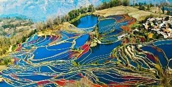 China_Yunnan_rice_terraces