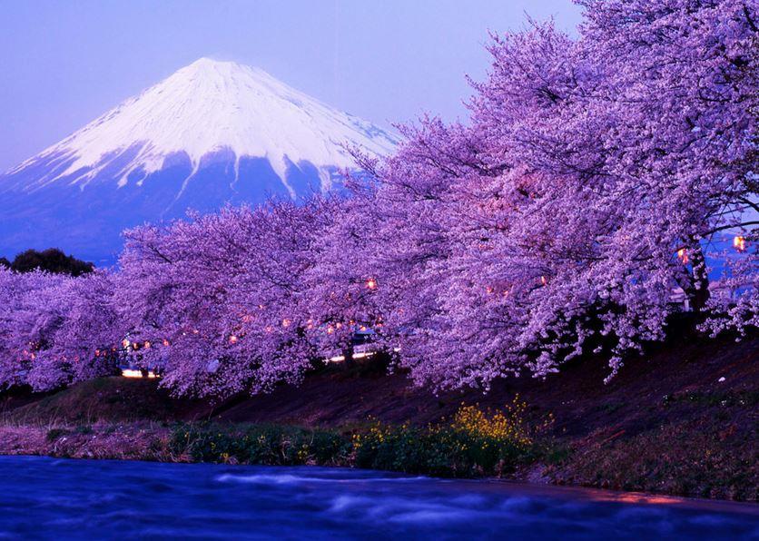 Фудзи-Яма