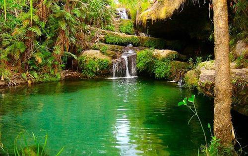 Madagascar_oasis